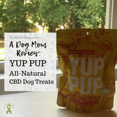 """YUP PUP's CBD dog treats are made from """"all natural, non-GMO, simple, clean, organic ingredients"""" and """"reduce anxiety, help digestion, and ease pain."""" 
