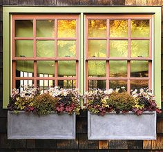 When autumn arrives, don't forget to dress your garden in fall colors. These perennials add gold, bronze, deep violet, and other autumnal shades to your containers. Click through to let Martha Stewart tell you how to plant them!