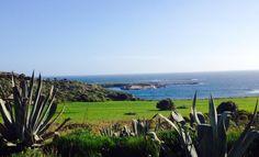 #isola del #preveto #Favignana