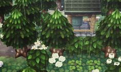 Rainy, I need more bushes in my town...