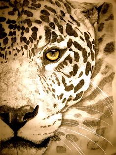"Artist: Mayhem Mediums; Pencil, Drawing ""Jaguar graphite"".. This reminds me of the pictures I drew when younger :)"