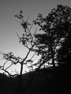 B-sides: Kamikōchi, Nagano, Japan  上高地, 長野県 21-22/9/2014...
