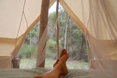 DreamCatchers boutique tent in native bush in Rangiputa Beach, Karikari Peninsula | Bookabach