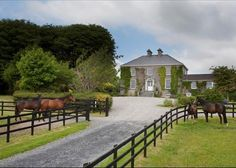 Love the home with the vines,the fence,the long drive and all the horses. Beautiful setting.