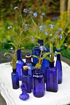 Blue vintage vases with blue tweedia—single vases for the cocktail tables, and three scattered on the tiers of each coffee table at the lounge areas. Blue Glass Bottles, Cobalt Glass, Blue Bottle, Antique Bottles, Vintage Bottles, Bottle Vase, Bottles And Jars, Antique Glass, Cobalt Blue