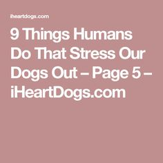 9 Things Humans Do That Stress Our Dogs Out – Page 5 – iHeartDogs.com