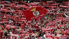 A vida de Nessy: Porque sou do Benfica??