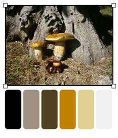 Tanto Piacere ;-) Autumn, Image, Fall Season, Fall
