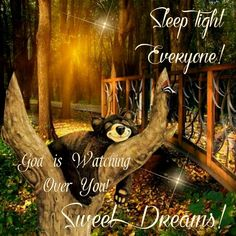 Good Night Everyone, God Bless You! Good Night Everyone, Good Night Friends, Good Night Wishes, Good Night Sweet Dreams, Picture Day, Picture Quotes, Picture Video, Good Friday Quotes, Good Night Quotes