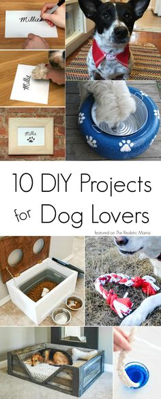 10 DIY Projects for Dog Lovers - #3 is soooo cute! Pumpkin will love these! (ad)