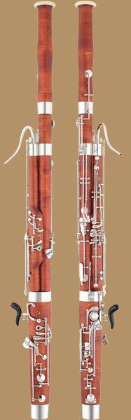 This Puchner Model Superior bassoon, Antique Finish would look great with concert black. :o)