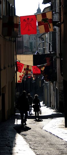 Ivrea during Carnevale In the Torinese wine zone of Piemonte, Italy http://www.winepassitaly.it/index.php/en/travel-wineries-piedmont/maps-and-wine-zones/torinese/itinerary/the-road-of-three-glasses#!prettyPhoto