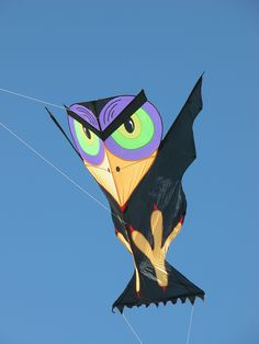 Don't you love this cartoon-style Bird kite! If not an actual Angry Bird, it evidently means business... T.P. (my-best-kite.com)