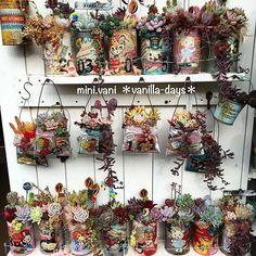 . ばにら缶コレクション(笑) #minivani #リメ缶 #リメイク #ジャンク #多肉 #寄せ植え #レトロポップ #remake #rétro #vintagevalentines #vintagecards #junk #kawaii #succulent #succulove #succulents