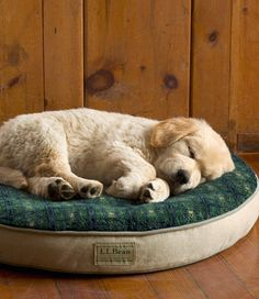 Premium Fleece-Top Replacement Dog Bed Cover, Round: Dog Bed Covers | Free Shipping at L.L.Bean