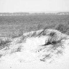 #Beach #Hornbaek