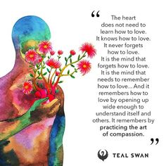 Wisdom Quotes, Words Quotes, Swan Quotes, Teal Swan, Laws Of Life, Awakening, Spirituality, Mindfulness, Thoughts