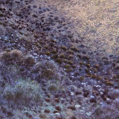 Official homepage of South African artist Karin Daymond. Karin captures the spirit of a place in her evocative paintings, drawings and printmaking. South African Artists, Printmaking, Landscapes, Drawings, Artwork, Plants, Blue, Painting, Paisajes