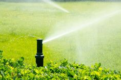 Photo about Garden spray irrigation system is working. Image of black, water, sprinkling - 14447590 Lawn Sprinkler System, Lawn Sprinklers, Irrigation, Sprays, Stock Photos, Landscape, Garden, Water, Vectors