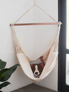 Rede Cadeira Creme - Collector55 mobile Girl Room, Girls Bedroom, Bedroom Decor, Dog Hammock, Cozy Place, Inspired Homes, Dog Bed, Decoration, Hanging Chair