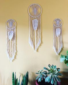 Macrame dream catchers will be available in my shop tomorrow Friday at am pst, three different sizes and ready to ship in 1 to Macrame Supplies, Macrame Projects, Macrame Art, Macrame Knots, Dream Catcher Supplies, Crafts To Do, Diy Crafts, String Crafts, Macrame Curtain