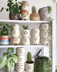 Pretty fly for a cacti 🌵 coming through with all the hilarious puns! Check out all her plant shelfies if you're in the mood for becoming a crazy plant lady / plant guy 🌱 We're loving her work! Plant Projects, Diy Art Projects, Cactus Pot, Cactus Plants, Pot Plants, Painted Plant Pots, Pottery Handbuilding, Clay Pots, Pottery Art