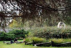 #parqueevahajduk #Ranelagh cuenta con uno de los parques mas hermosos de la provincia de buenos aires, se encuentra en el partido de Berazategui, en Ranelagh en la vista de fondo se ve uno de los tantos ejemplos donde la gente va en bicicleta y descansando y distrita de nuestro parque. Trabajo fotografico de #Diazdevivargustavo año 2020 agosto con  llevamos ya la cantidad de 163 días cuarentena y se extendió hasta hasta el 20 de septiembre Plants, Taking A Break, Parking Lot, September, Bike, Buenos Aires, Parks, Plant, Planting
