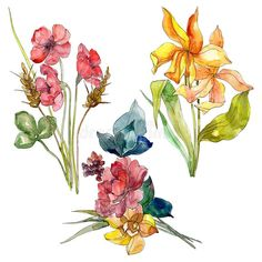Wildflower bouquet floral botanical flowers. Watercolor background set. Isolated wildflower illustration element.. Illustration about fall, isolated, leaf, colorful - 141851203 Botanical Flowers, Watercolor Background, Wild Flowers, Bouquet, Leaves, Fall, Illustration, Floral, Pattern