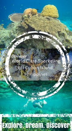 World Class Snorkeling off Culion Island, Philippines. Click to read the full travel blog post at http://www.divergenttravelers.com/crowning-glory-reef-world-class-snorkeling-off-culion-island/