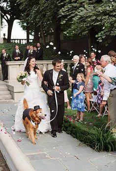 special guests, animaux, chiens, dogs, wedding, mariage, ceremony, cérémonie, couple, groom, bride     HAD TO POST! #myfauxdiamond #weddings #bride