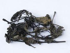 Da Qing Ye (Isatidis Folium)