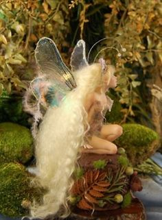 The Enchanted World of Fairies
