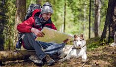 Dog Hiking Gear Guide: 13 Items You Need for Hiking With Dogs