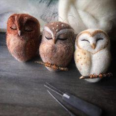 Felt Owls, Felt Birds, Felt Animals, Needle Felted Owl, Owl Quilts, Owl Bags, Wood Owls, Owl Photos, Art Deco Posters