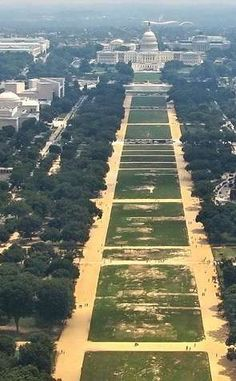 National Mall | Travel | Vacation Ideas | Road Trip | Places to Visit | Washington | DC | Wildlife Park | Public Garden | City Park | Community Park | Historic Site | Tourist Attraction | National Park