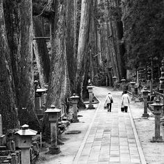 Our ancestors on my father's side rest here at: Mount Koya, Wakayama, Japan