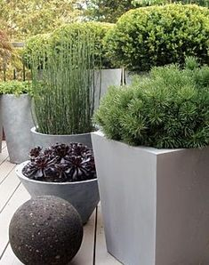 Thrilling About Container Gardening Ideas. Amazing All About Container Gardening Ideas. Large Outdoor Planters, Diy Concrete Planters, Outdoor Pots, Garden Planters, Outdoor Gardens, Modern Planters, Concrete Patio, Potted Garden, Bamboo Garden