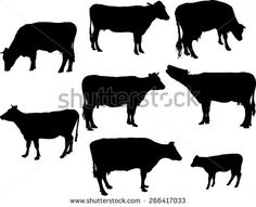 cows and calf 2 vector silhouette