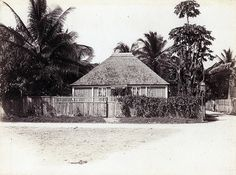 Art 1897 Victorian Print ~ Jamaica ~ Hut With Palm Leaves Native People Donkey