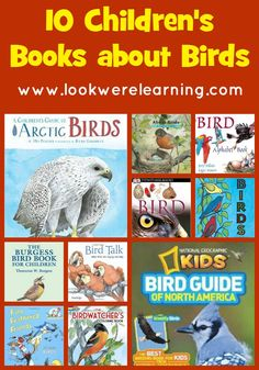 10 children's books about birds. There's a book your child will enjoy no matter what time of year you're bird watching!