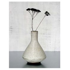 1 Ceramic Stoneware Lab Vase in Beach Stone White by sarapaloma, $120.00