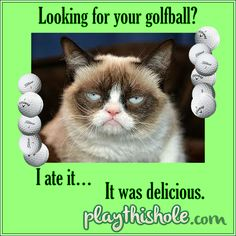 Don't let this grumpy guy steal all your golf balls!! For more funny golf pics and vidoes visit www.playthishole.com! And have an awesome golf day! Funny Golf, Golf Humor, Golf Crafts, Golf Course Reviews, Golf Day, Golf Videos, Photo Checks, Holiday Sales, Digital Photography