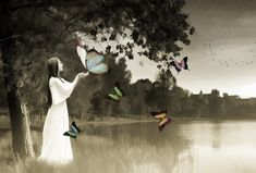 Contemplando mariposas Por el prado va paseando y a las mariposas, va contemplando las otea, mientras estas, vuelan libres por...