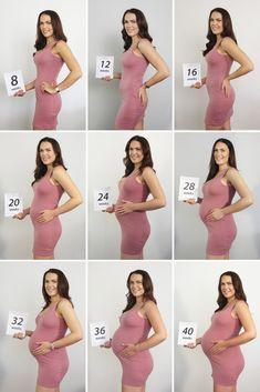 Baby bump progression photo. Baby bump progress.