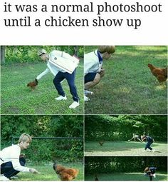 Even a chicken can amuse the whole Bangtan. Lucky chicken
