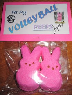Easter gifts for volleyball team friends. hhaha i am going to do this next year! but for my birthday maybe. Diy Volleyball Gifts, Volleyball Party, Volleyball Mom, Volleyball Decorations, Cheerleading Gifts, Volleyball Quotes, Softball Treats, Cheerleading Jumps, Locker Decorations
