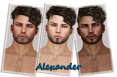 shape, skin, beard, SLINK, appliars, male avatar, men, guy, gay, standard, mesh, hair, hairbase, facial hair | Flickr - Photo Sharing!