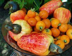 Frutas nativas do Brasil