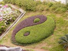 Das Tai Chi - Symbol für Yin und Yang
