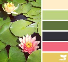 Aren't lily pads amazing! lily pad hues from Design Seeds Colour Pallette, Colour Schemes, Color Combos, Design Palette, Color Harmony, Design Seeds, Color Studies, Color Swatches, Color Theory